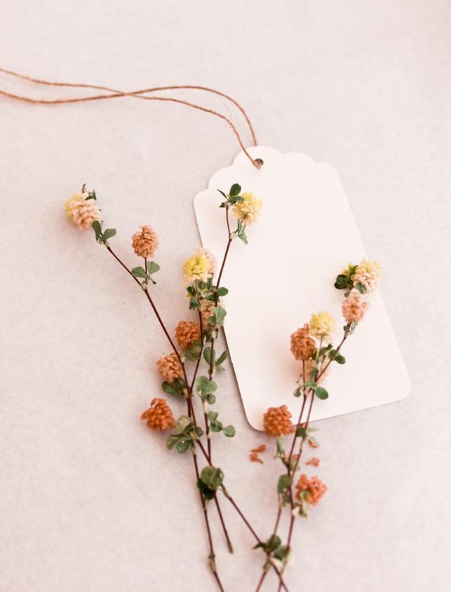 etiqueta-blanca-craft
